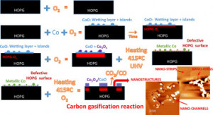 In-situ study of the carbon gasification reaction of highly oriented pyrolytic graphite promoted by cobalt oxides and the novel nanostructures appeared after reaction