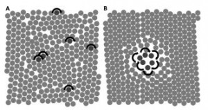 Aggregation dynamics of active rotating particles in dense passive media