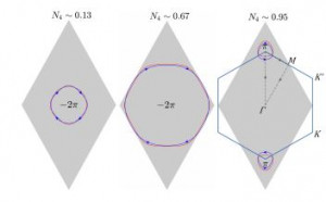 From quantum anomalous Hall phases to topological metals in interacting decorated honeycomb lattices