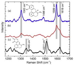 Laser writing of nanostructured silicon arrays for the SERS detection of biomolecules with inhibited oxidation