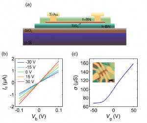Multi-terminal electronic transport in boron nitride encapsulated TiS3 nanosheets