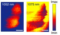 Plasmon-induced dual-wavelength operation in a Yb3+ laser
